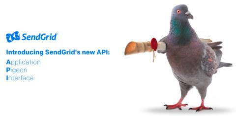 Application Pigeon Interface